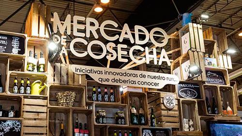 PROYECTOS CON VALORES: MERCADO DE LA COSECHA